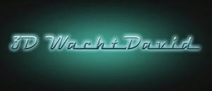 Logo 3D wacht david