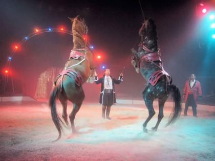 Cirque Achille Zavatta fils